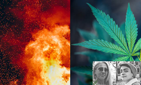 Cannabis Lab Explosion Kills Two: A Wake-up Call for a Fast-Growing Industry